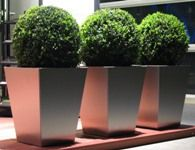 terrassengestaltung silvedes ag. Black Bedroom Furniture Sets. Home Design Ideas